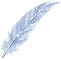 Datei:Plume-pegase.png