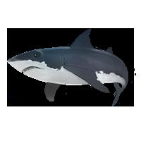 Hai Unterwasseraktion.png