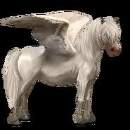 Neufundland Pony Cremello Pegasus Altes Design