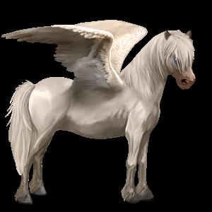 Datei:Neufundland Pony Cremello Pegasus Altes Design.png