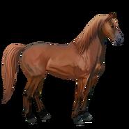 Mustang Fuchs Alt