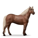 Quarter Pony Dunkelfuchs mit heller Mähne