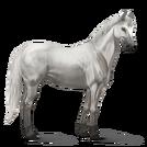 Quarter Horse.Hellgrau.Altes Design