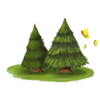 Wald Standort Reitzentrum
