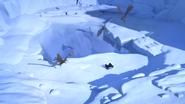 Glacier Island 6