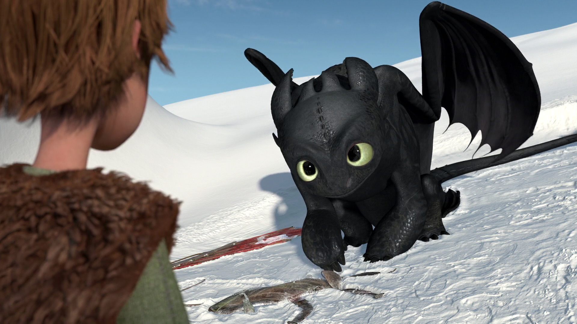 Gift Of The Night Fury  How To Train Your Dragon Wiki  Fandom Powered By  Wikia
