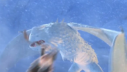 Snowwraith attacking gothi