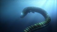 Giant electric eel 5