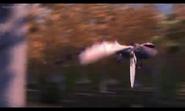 Dustbrawler 036