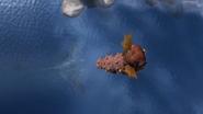 Trapped Seashocker 84
