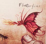 LongEaredFlutterfire