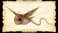 Dragons bod thunder gallery image 04