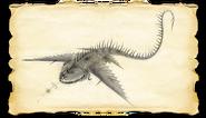 Dragons BOD Thunder Gallery Image 02