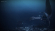 Trapped Seashocker 89