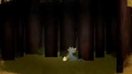 BookOfDragons-Cat5
