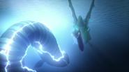 Giant electric eel 11