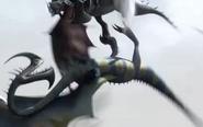 Dragon 7.1