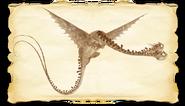 Dragons bod zipple gallery image 02-1-