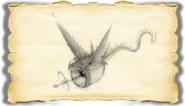 Dragons BOD Thunder Gallery Image 03