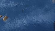 Trapped Seashocker 21