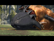 Toothless(41)