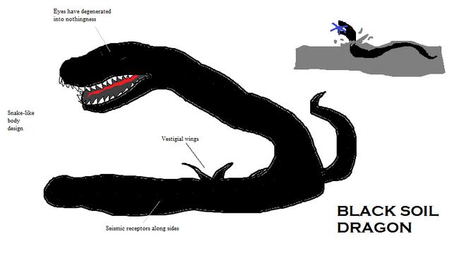 File:Black Soil Dragon.png
