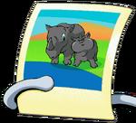 Rhino Picture