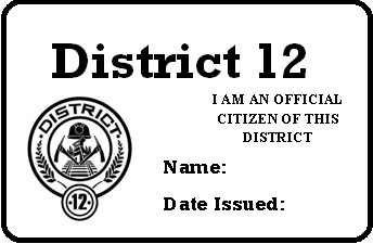 File:District 12 permit.jpg