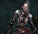 Wargar Warrior
