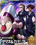 HxH Battle Collection Card (17)
