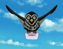 Owl NPC
