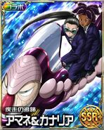 HxH Battle Collection Card (18)