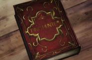 Phantom Rouge - Sheila's book