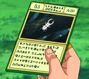 Beetlecard