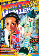 Hunter-x-hunter-treasure-4-shueisha