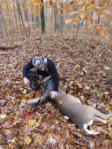 File:Deerhuntingwithbow.jpg