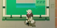 Otter Prisoner