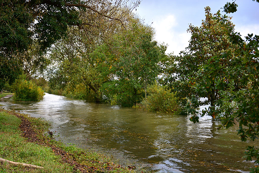 File:Flooding along the Elbe River in Hamburg-Risen, Germany on October 22, 2014.png
