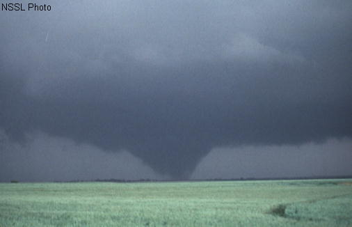 File:Wedge tornado.png