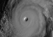 Hurricane Wilma (Category 4)