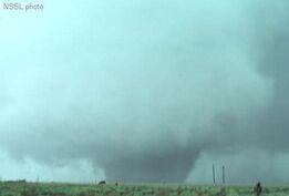 Shamrock Texas Tornado
