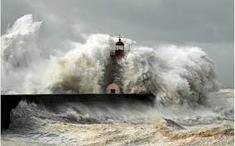 Tsunami (59)