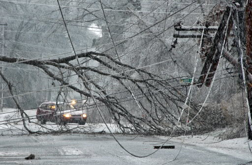 File:Winter-Weather-Downed-Tree-Branch.jpg