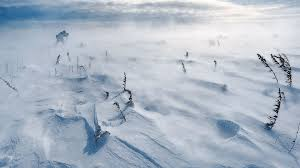 File:Deep Snow (5).jpg