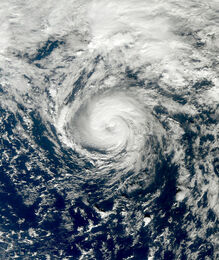 Tropical Storm Grace 2009 at peak intensity