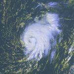 Tropical Storm Peter 2003.jpg
