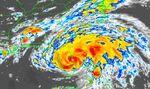 Hurricane David- Florida.JPG