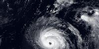 Sass's Hypothetical Book Hurricane Season