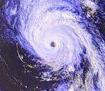 Typhoon (8).jpg