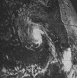 Tropical Storm Beryl (1982).jpg